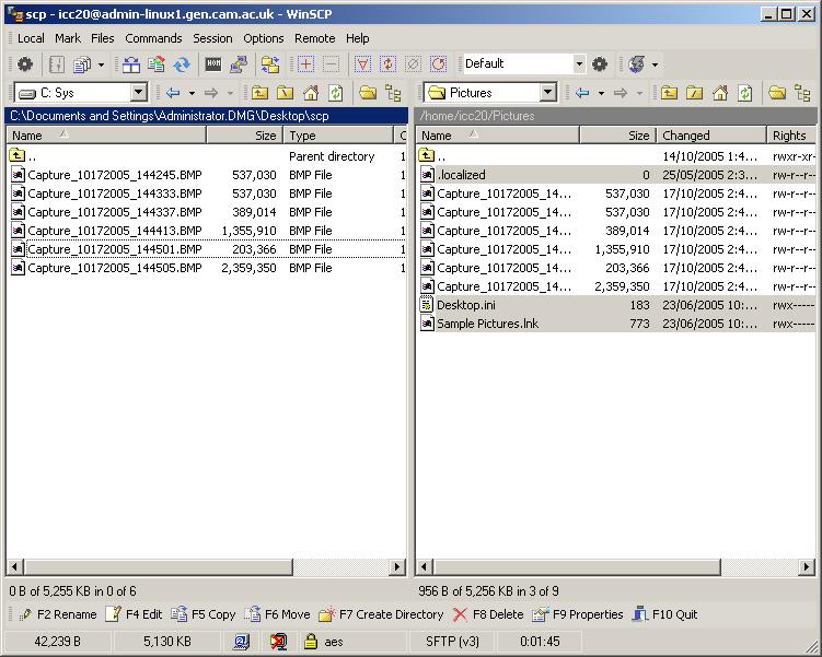 WinSCP panes