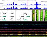 Epigenetics theme image