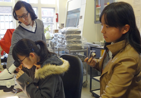 Kimata school visit Nov 2015 lab 475