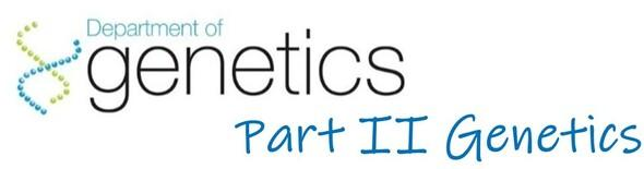 Genetics Part II Logo
